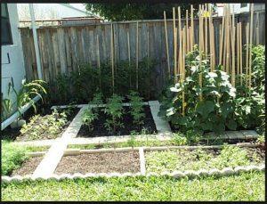 organik tarım para