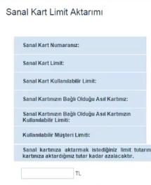 sanal-kart-limit
