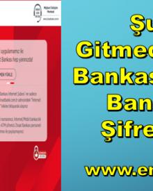 Şubeye Gitmeden Ziraat Bankası İnternet Bankacılığı Şifresi Alma